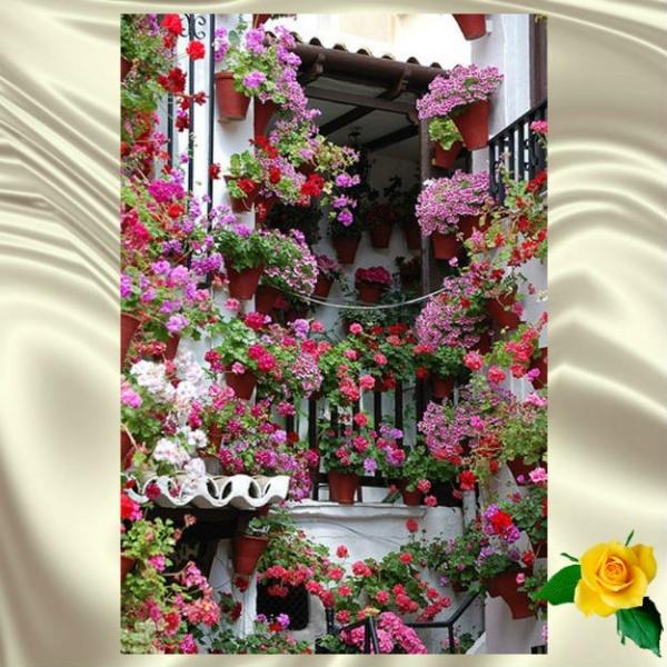 Красивые дома, что буквально тонут в цветах