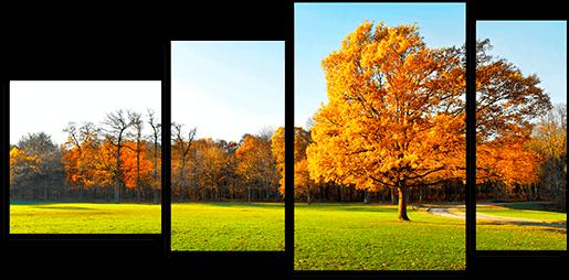 Как цвета влияют на душевное состояние